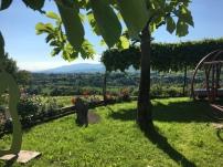 Da casa DE MARTIN (FLAMINIO E LIA)... veduta paradisiaca sui colli del FELETTO